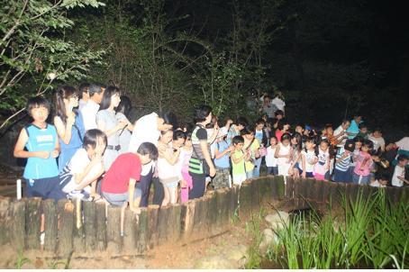 2014년까지 3천 5백 마리 순차적 방사로 반딧불이 보금자리화